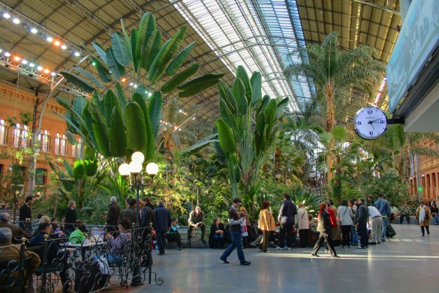 Botanical Garden Inside Atocha Station